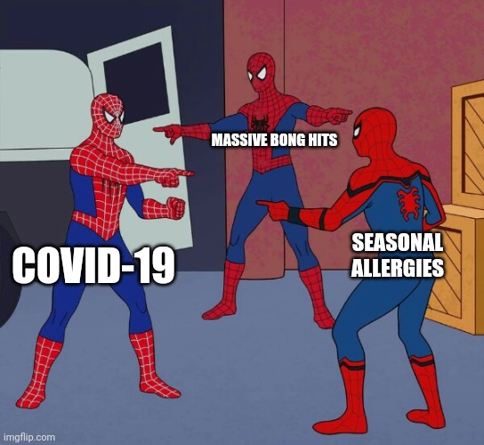 MASSIVE BONG HITS; SEASONAL ALLERGIES; COVID-19 | image tagged in 3 spidermen pointing at each other | made w/ Imgflip meme maker