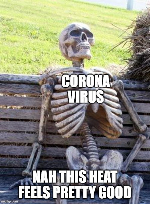 Waiting Skeleton Meme | CORONA VIRUS NAH THIS HEAT FEELS PRETTY GOOD | image tagged in memes,waiting skeleton | made w/ Imgflip meme maker