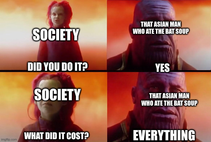 thanos what did it cost |  THAT ASIAN MAN WHO ATE THE BAT SOUP; SOCIETY; DID YOU DO IT? YES; SOCIETY; THAT ASIAN MAN WHO ATE THE BAT SOUP; EVERYTHING; WHAT DID IT COST? | image tagged in thanos what did it cost | made w/ Imgflip meme maker