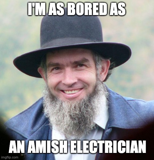 Amish | I'M AS BORED AS AN AMISH ELECTRICIAN | image tagged in amish,social distancing | made w/ Imgflip meme maker