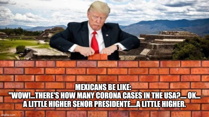 "MEXICANS BE LIKE:     ""WOW!...THERE'S HOW MANY CORONA CASES IN THE USA?.... OK...   A LITTLE HIGHER SENOR PRESIDENTE....A LITTLE HIGHER. 