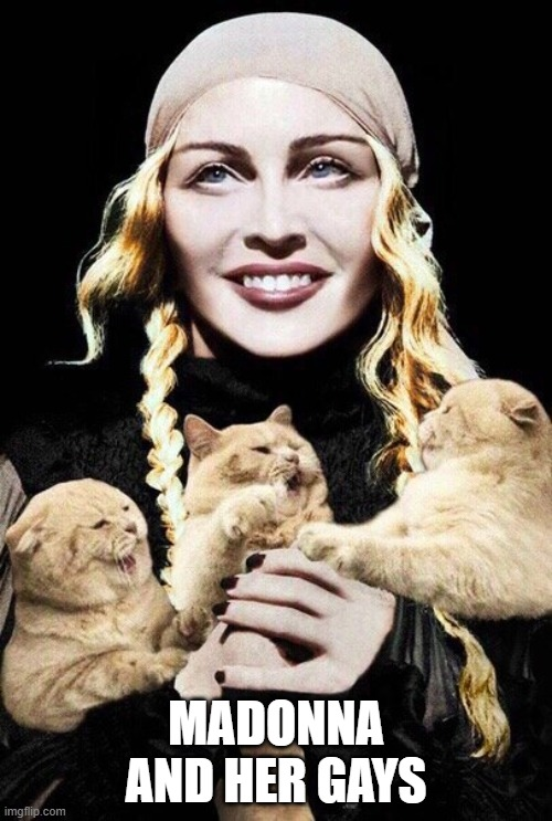 Madame X and her gays | MADONNA AND HER GAYS | image tagged in cute kittens,madonna,lgbtq,lgbt | made w/ Imgflip meme maker