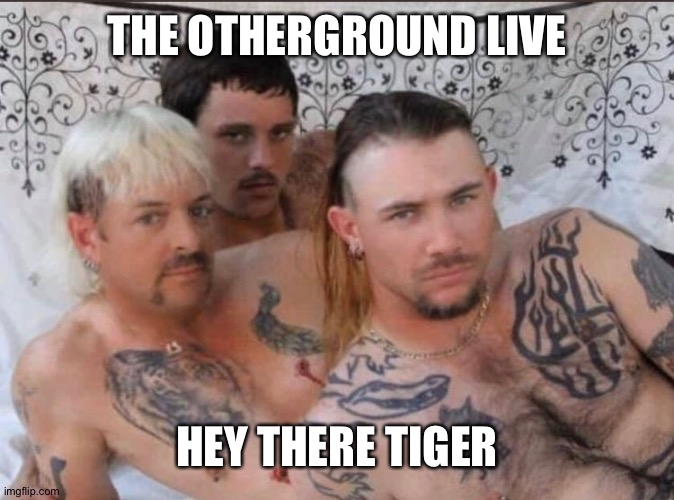 Tiger King and Cubs |  THE OTHERGROUND LIVE; HEY THERE TIGER | image tagged in tiger king and cubs | made w/ Imgflip meme maker