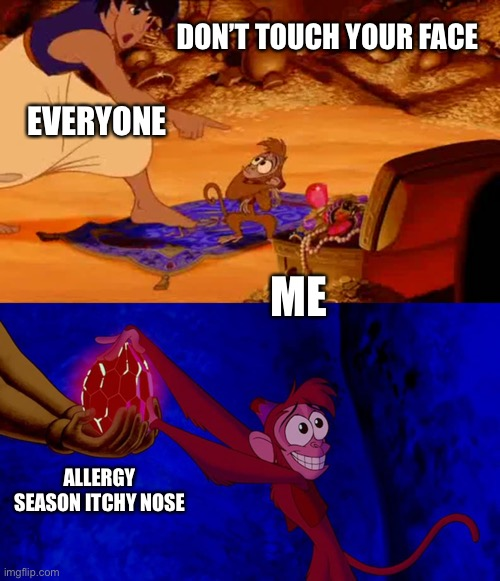 Allergy Season 2020 |  DON'T TOUCH YOUR FACE; EVERYONE; ME; ALLERGY SEASON ITCHY NOSE | image tagged in allergies,coronavirus,aladdin | made w/ Imgflip meme maker