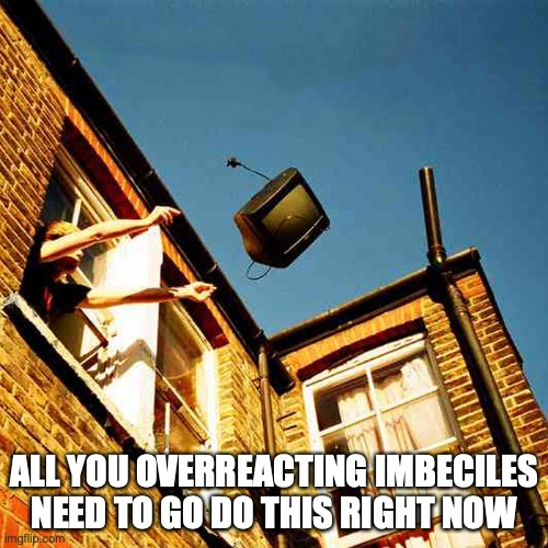 COVIDIOTS |  ALL YOU OVERREACTING IMBECILES NEED TO GO DO THIS RIGHT NOW | image tagged in covid19,coronavirus,tv,hysteria,idiots | made w/ Imgflip meme maker