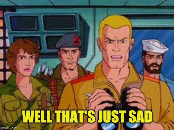 WTF GI JOE | WELL THAT'S JUST SAD | image tagged in wtf gi joe | made w/ Imgflip meme maker