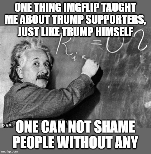 Smart | ONE THING IMGFLIP TAUGHT ME ABOUT TRUMP SUPPORTERS, JUST LIKE TRUMP HIMSELF ONE CAN NOT SHAME PEOPLE WITHOUT ANY | image tagged in smart | made w/ Imgflip meme maker