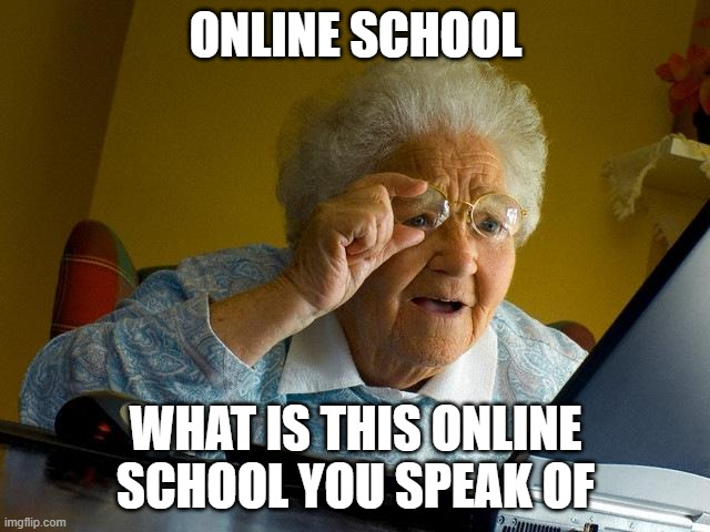 Grandma Finds The Internet | ONLINE SCHOOL WHAT IS THIS ONLINE SCHOOL YOU SPEAK OF | image tagged in memes,grandma finds the internet | made w/ Imgflip meme maker