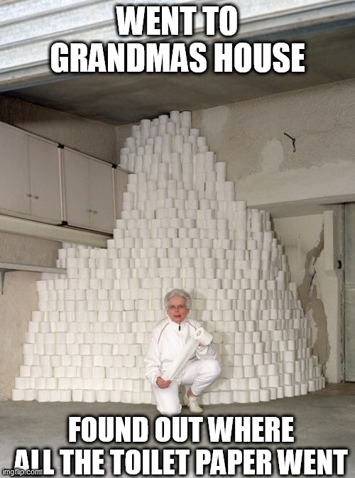 damn it grandma |  WENT TO GRANDMAS HOUSE; FOUND OUT WHERE ALL THE TOILET PAPER WENT | image tagged in mountain of toilet paper,toilet paper | made w/ Imgflip meme maker