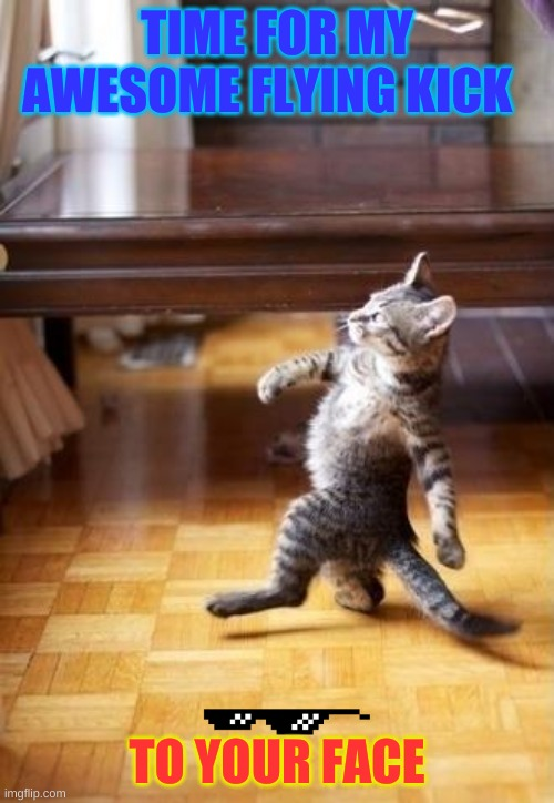 Cool Cat Stroll | TIME FOR MY AWESOME FLYING KICK TO YOUR FACE | image tagged in memes,cool cat stroll | made w/ Imgflip meme maker