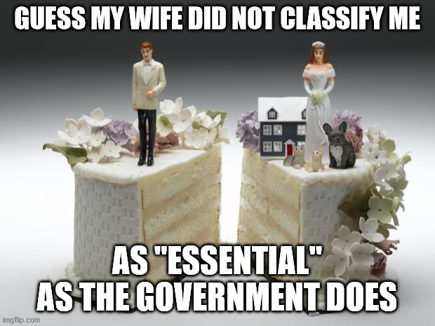 "divorce |  GUESS MY WIFE DID NOT CLASSIFY ME; AS ""ESSENTIAL"" AS THE GOVERNMENT DOES 