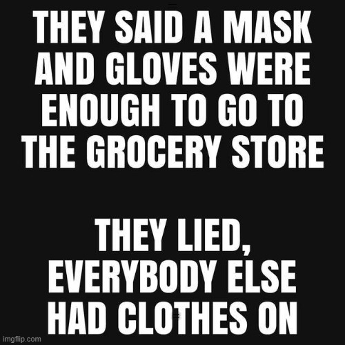 bare essentials |  THY SAID A MASK AND GLOVES WERE ENOUGH TO GO TO THE STORE; THEY LIED, EVERYBODY ELSE HAD CLOTHES ON | image tagged in gloves,mask | made w/ Imgflip meme maker
