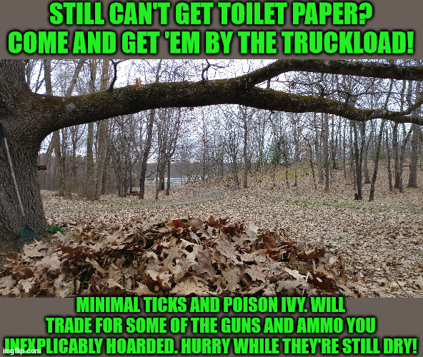 Seriously, though... |  STILL CAN'T GET TOILET PAPER? COME AND GET 'EM BY THE TRUCKLOAD! MINIMAL TICKS AND POISON IVY. WILL TRADE FOR SOME OF THE GUNS AND AMMO YOU INEXPLICABLY HOARDED. HURRY WHILE THEY'RE STILL DRY! | image tagged in memes,funny memes | made w/ Imgflip meme maker