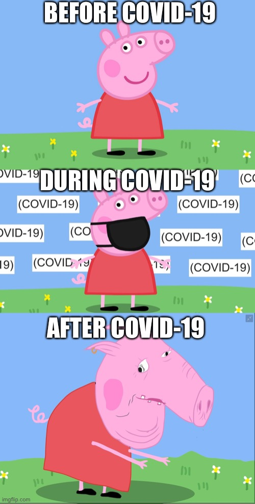 Peppa pig COVID-19 |  BEFORE COVID-19; DURING COVID-19; AFTER COVID-19 | image tagged in peppa pig,covid-19,memes,funny,mlg,before and after | made w/ Imgflip meme maker