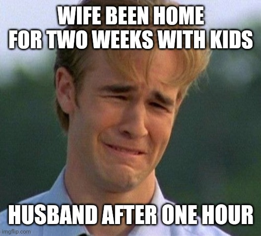 1990s First World Problems |  WIFE BEEN HOME FOR TWO WEEKS WITH KIDS; HUSBAND AFTER ONE HOUR | image tagged in memes,1990s first world problems | made w/ Imgflip meme maker