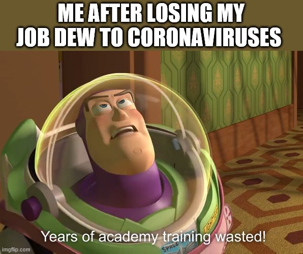 years of academy training wasted | ME AFTER LOSING MY JOB DEW TO CORONAVIRUSES | image tagged in years of academy training wasted | made w/ Imgflip meme maker