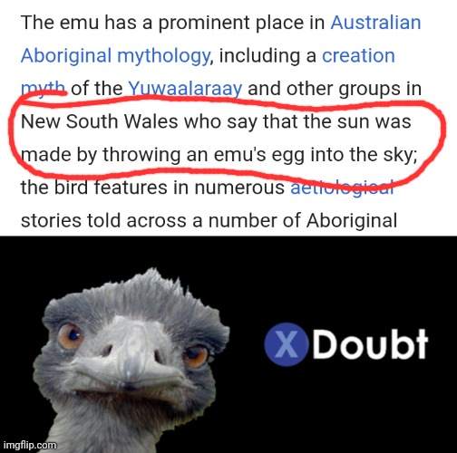 image tagged in emu doubt,emu,memes,australia | made w/ Imgflip meme maker