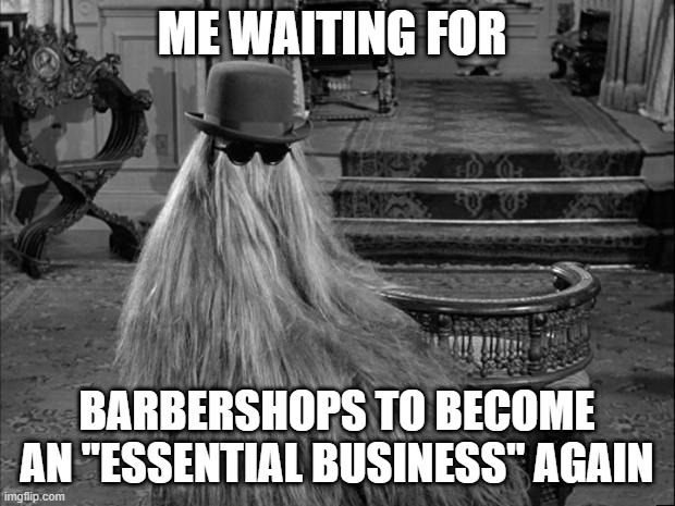 "Cousin IT |  ME WAITING FOR; BARBERSHOPS TO BECOME AN ""ESSENTIAL BUSINESS"" AGAIN 