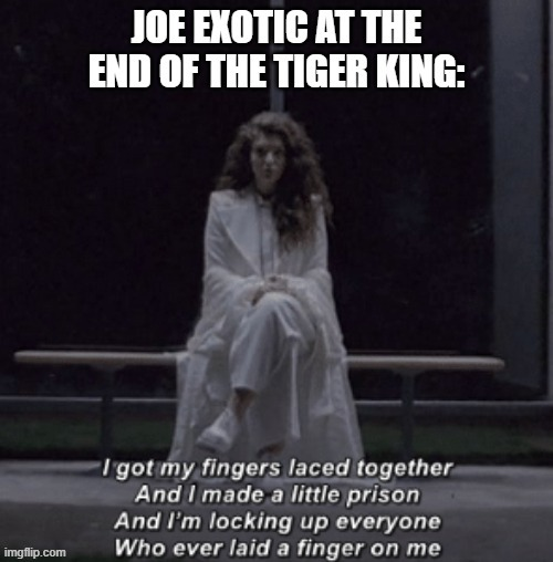 Joe Exotic at the end of The Tiger King | image tagged in joe exotic,lorde,yellow flicker beat,song reference,the tiger king,netflix | made w/ Imgflip meme maker
