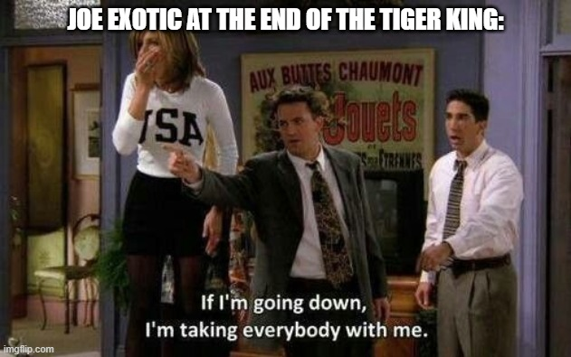 If I'm going down, I'm taking everybody with me |  JOE EXOTIC AT THE END OF THE TIGER KING: | image tagged in the tiger king,joe exotic,netflix,friends,chandler bing,tv show | made w/ Imgflip meme maker