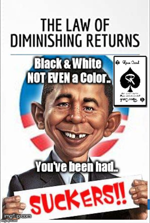 Law of Diminishing Returns.... | image tagged in white guilt,racism,nature,diversity,race card | made w/ Imgflip meme maker