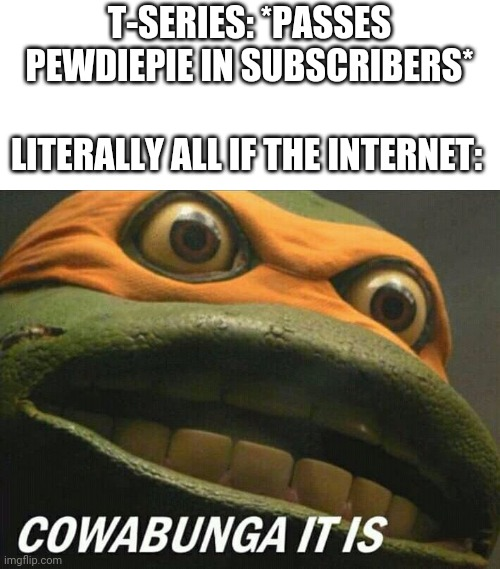 If you work for youtube: BAN THESE INDIAN YOUTUBERS |  T-SERIES: *PASSES PEWDIEPIE IN SUBSCRIBERS*; LITERALLY ALL IF THE INTERNET: | image tagged in cowabunga it is,teenage mutant ninja turtles,pewdiepie,t-series,memes,youtube | made w/ Imgflip meme maker