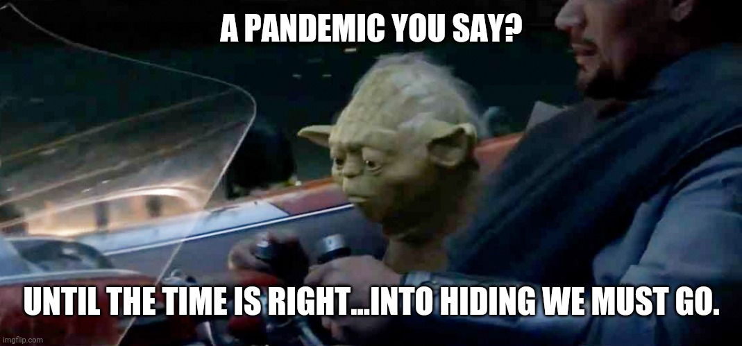 Yoda : 2020 Vision |  A PANDEMIC YOU SAY? UNTIL THE TIME IS RIGHT...INTO HIDING WE MUST GO. | image tagged in yoda wisdom,master yoda | made w/ Imgflip meme maker