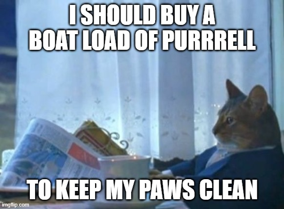 I Should Buy A Boat Cat Meme |  I SHOULD BUY A BOAT LOAD OF PURRRELL; TO KEEP MY PAWS CLEAN | image tagged in memes,i should buy a boat cat | made w/ Imgflip meme maker