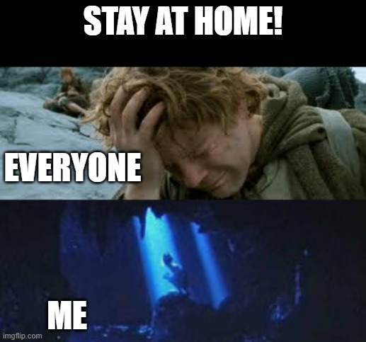 Corona |  STAY AT HOME! EVERYONE; ME | image tagged in stay at home,lotr,lord of the rings,corona | made w/ Imgflip meme maker