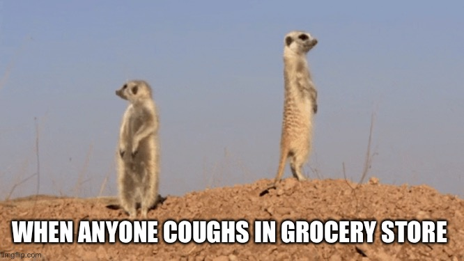 WHEN ANYONE COUGHS IN GROCERY STORE | image tagged in covid 19,covid,corona virus,coronavirus,funny,cough | made w/ Imgflip meme maker