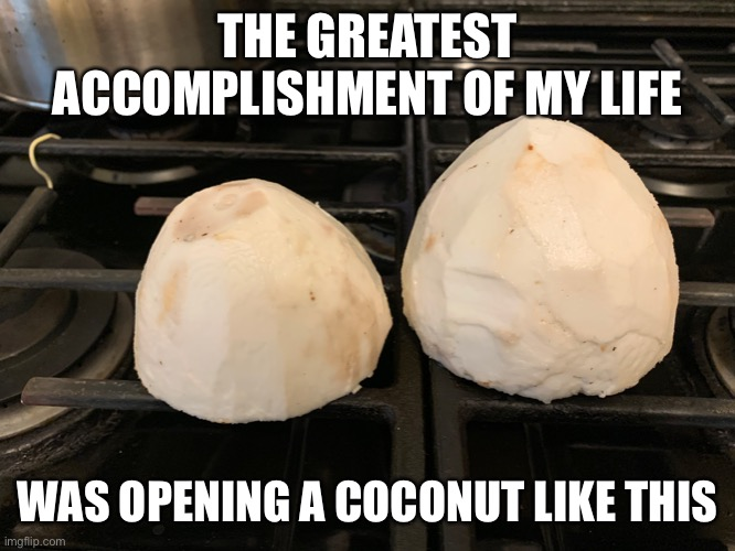 THE GREATEST ACCOMPLISHMENT OF MY LIFE; WAS OPENING A COCONUT LIKE THIS | image tagged in memes,sad truth,true story bro,funny,quarantine | made w/ Imgflip meme maker