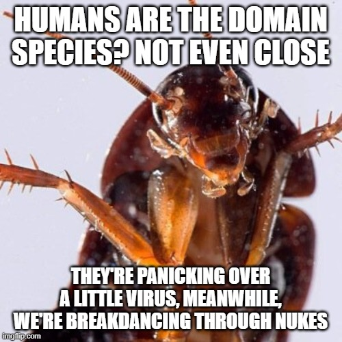 All Hail the new overlords of the planet! | HUMANS ARE THE DOMAIN SPECIES? NOT EVEN CLOSE THEY'RE PANICKING OVER A LITTLE VIRUS, MEANWHILE, WE'RE BREAKDANCING THROUGH NUKES | image tagged in roach,coronavirus | made w/ Imgflip meme maker