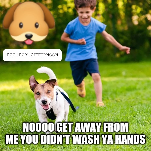 NOOOO GET AWAY FROM ME YOU DIDN'T WASH YA HANDS | image tagged in peta,coronavirus,backyard,dog memes | made w/ Imgflip meme maker