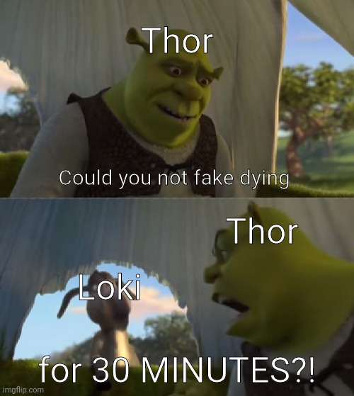 Thor & Loki in a nutshell |  Thor; Could you not fake dying; Thor; Loki; for 30 MINUTES?! | image tagged in could you not ___ for 5 minutes,marvel,thor ragnarok,thor,loki | made w/ Imgflip meme maker