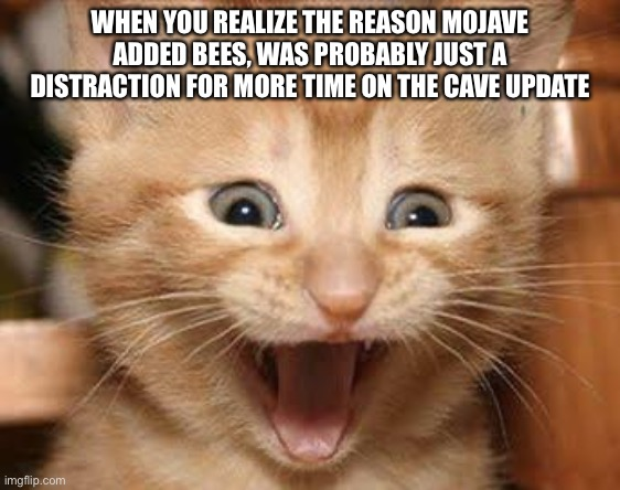 Excited Cat |  WHEN YOU REALIZE THE REASON MOJAVE ADDED BEES, WAS PROBABLY JUST A DISTRACTION FOR MORE TIME ON THE CAVE UPDATE | image tagged in memes,excited cat | made w/ Imgflip meme maker