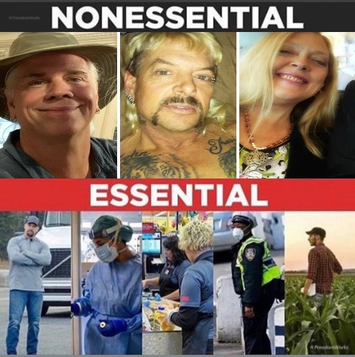 Tiger King Essentials | image tagged in tiger king,essential,coronavirus,covid-19,netflix | made w/ Imgflip meme maker