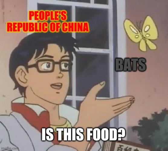 """Is this food?"" 