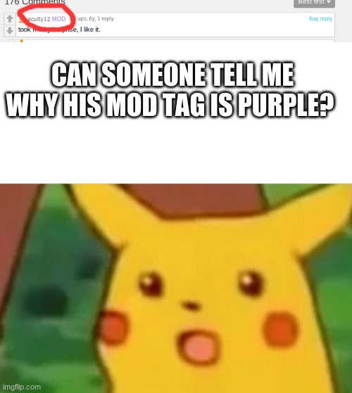 Purple MOD? |  CAN SOMEONE TELL ME WHY HIS MOD TAG IS PURPLE? | image tagged in memes,surprised pikachu,purple mod | made w/ Imgflip meme maker