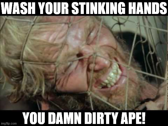 Wash Your Hands Ape |  WASH YOUR STINKING HANDS; YOU DAMN DIRTY APE! | image tagged in damn dirty apes,covid-19,planet of the apes,hand washing | made w/ Imgflip meme maker