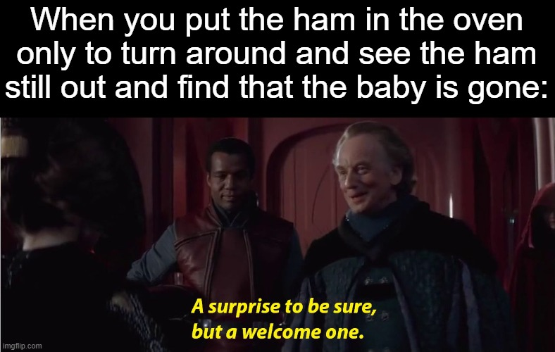 A suprise to be sure, but a welcome one |  When you put the ham in the oven only to turn around and see the ham still out and find that the baby is gone: | image tagged in a suprise to be sure but a welcome one,sorry not sorry,burn baby burn,yeet baby,hehehe | made w/ Imgflip meme maker