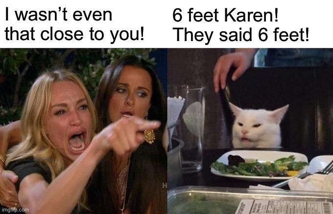 Coronavirus meme |  I wasn't even that close to you! 6 feet Karen! They said 6 feet! | image tagged in memes,woman yelling at cat,coronavirus meme,stay 6 feet away,social distancing,virus | made w/ Imgflip meme maker