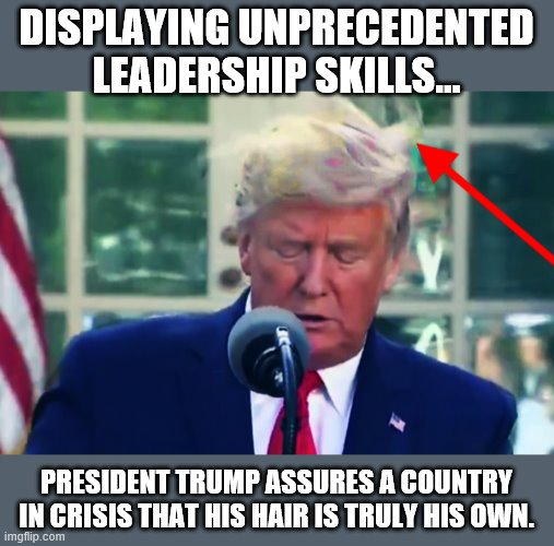 BREAKING... | DISPLAYING UNPRECEDENTED LEADERSHIP SKILLS... PRESIDENT TRUMP ASSURES A COUNTRY IN CRISIS THAT HIS HAIR IS TRULY HIS OWN. | image tagged in donald trump,donald trumph hair,trump is a moron,donald trump is an idiot | made w/ Imgflip meme maker