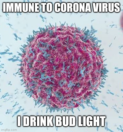 Coronavirus Meme |  IMMUNE TO CORONA VIRUS; I DRINK BUD LIGHT | image tagged in coronavirus meme | made w/ Imgflip meme maker