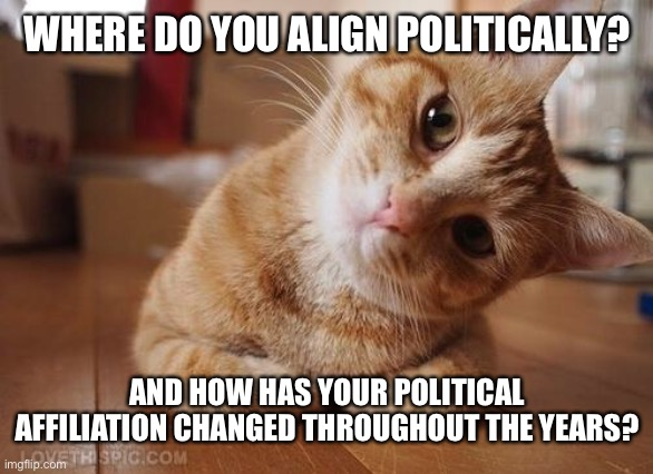 Curious Question Cat | WHERE DO YOU ALIGN POLITICALLY? AND HOW HAS YOUR POLITICAL AFFILIATION CHANGED THROUGHOUT THE YEARS? | image tagged in curious question cat | made w/ Imgflip meme maker