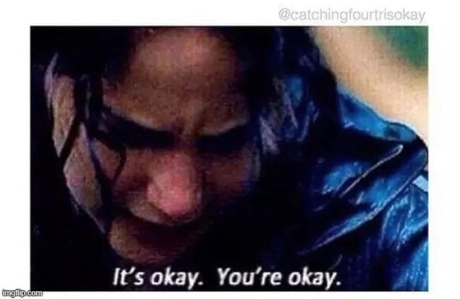 It's okay. You're okay. | image tagged in it's okay you're okay | made w/ Imgflip meme maker