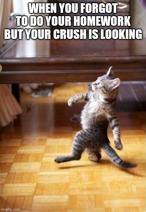 Cool Cat Stroll | WHEN YOU FORGOT TO DO YOUR HOMEWORK BUT YOUR CRUSH IS LOOKING | image tagged in memes,cool cat stroll | made w/ Imgflip meme maker