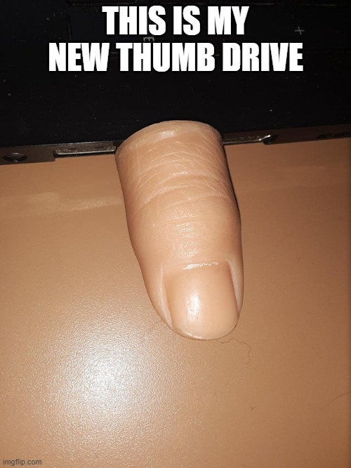 My new thumb drive! |  THIS IS MY NEW THUMB DRIVE | image tagged in funny,memes,thumbs up,drive,computer,thumb | made w/ Imgflip meme maker
