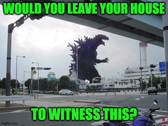 worse than corona virus? | WOULD YOU LEAVE YOUR HOUSE TO WITNESS THIS? | image tagged in godzilla | made w/ Imgflip meme maker