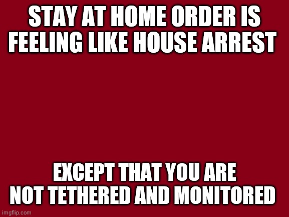 Stay at Home |  STAY AT HOME ORDER IS FEELING LIKE HOUSE ARREST; EXCEPT THAT YOU ARE NOT TETHERED AND MONITORED | image tagged in stay at home | made w/ Imgflip meme maker