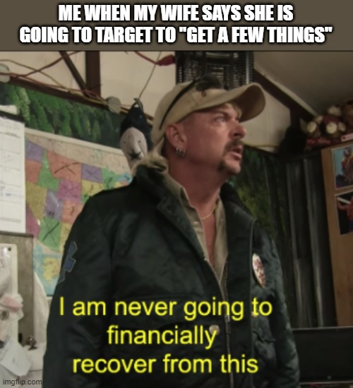 "My Wife LOVES Target |  ME WHEN MY WIFE SAYS SHE IS GOING TO TARGET TO ""GET A FEW THINGS"" 